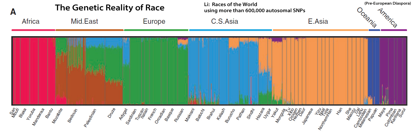 World Maps Races Of The World
